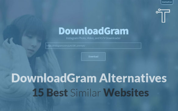 DownloadGram Alternatives – 15 Best Similar Websites