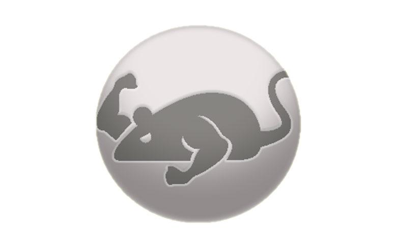 Cat Mouse Apk